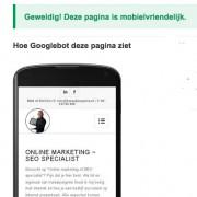 Mobiel vriendelijke website